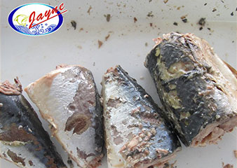 Canned Mackerel in Brine (or in Salt Water)